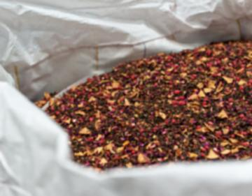 WOLLENHAUPT - BLOOD ORANGE INFUSO - 25 CHILI