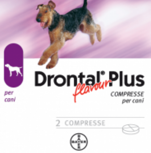 Bayer drontal multi aroma carne ex plus flavour 2 for Pastiglie filaria cani