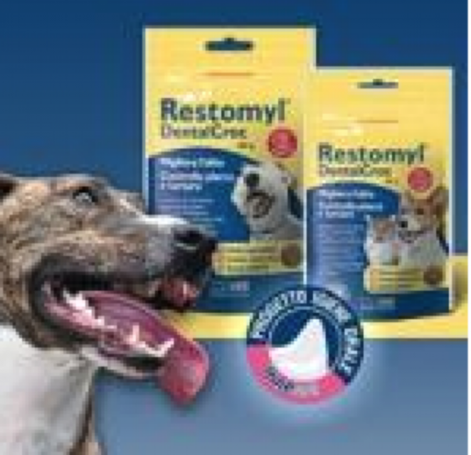 RESTOMYL DENTAL CROC 60 G