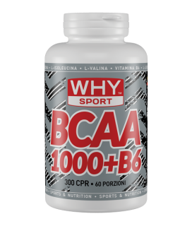 WHY SPORT BCAA 1000 + B6 300 compresse